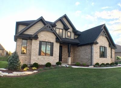 Mokena Single Family Home For Sale: 21328 Prairie Ridge Drive