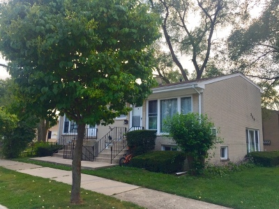 Addison Multi Family Home For Sale: 339 West Stone Avenue