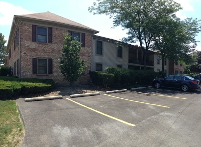 Hoffman Estates Condo/Townhouse Contingent: 1704 Fayette Walk #A