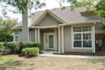 Warrenville Condo/Townhouse Price Change: 30w072 Willow Lane #F