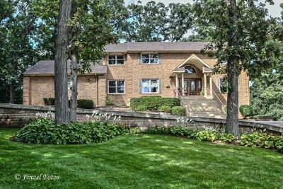 Bartlett Single Family Home For Sale: 693 Braintree Lane