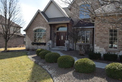 Frankfort Single Family Home For Sale: 11067 Siena Drive