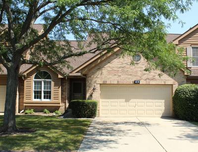 Bartlett Condo/Townhouse For Sale: 553 Philip Drive