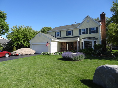 Hanover Park Single Family Home For Sale: 1705 Wildwood Lane