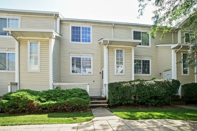 Hanover Park Condo/Townhouse Contingent: 1635 Liberty Street