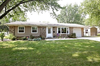 Schaumburg Single Family Home Contingent: 1538 Princeton Lane
