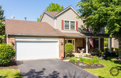 Naperville Single Family Home For Sale: 2524 Newport Drive