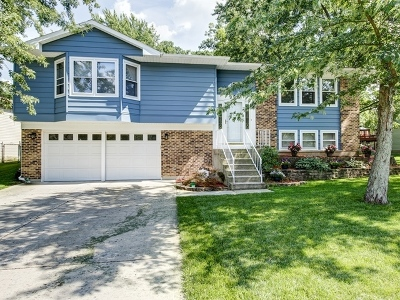 Bolingbrook Single Family Home Price Change: 956 North Ashbury Avenue
