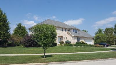 Palos Park Single Family Home For Sale: 10750 Grandview Drive