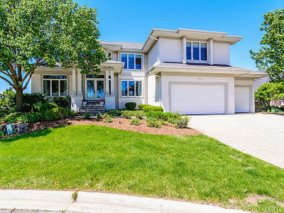Plainfield Single Family Home For Sale: 13258 Lakepoint Drive