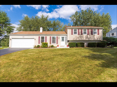 Schaumburg Single Family Home For Sale: 133 North Braintree Drive