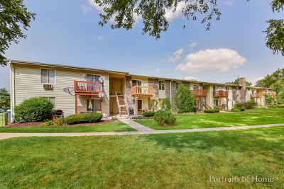 Oswego Condo/Townhouse For Sale: 2500 Light Road #208