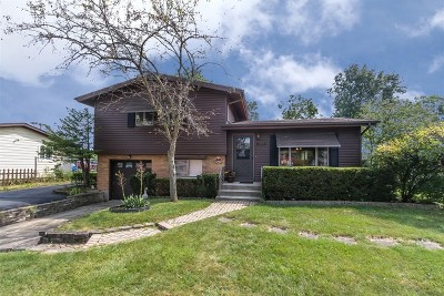 Roselle Single Family Home For Sale: 209 Pinecroft Drive