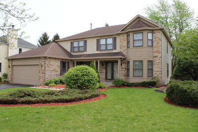Cary Single Family Home For Sale: 849 Blue Mesa Trail