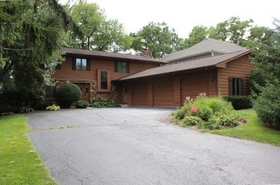 Lake Zurich Single Family Home For Sale: 399 Lois Lane