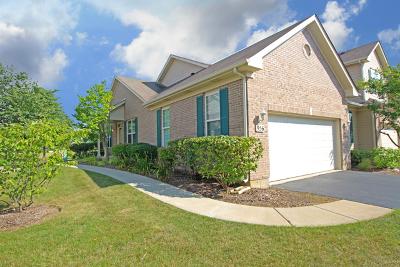 Elgin Condo/Townhouse For Sale: 956 Oak Ridge Boulevard