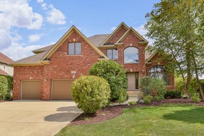 Plainfield Single Family Home For Sale: 11659 Millennium Parkway