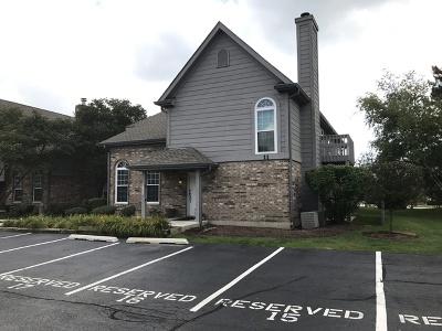 Naperville Condo/Townhouse Contingent: 11 Foxcroft Road #203
