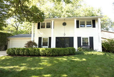 Naperville Single Family Home For Sale: 1235 Clyde Drive