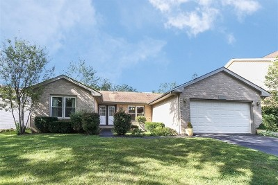 Lisle Single Family Home For Sale: 6570 Raintree Court