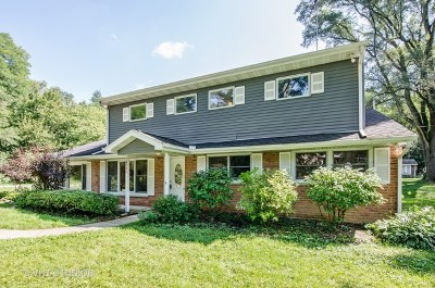 Cary Single Family Home Contingent: 28771 West Pittner Avenue