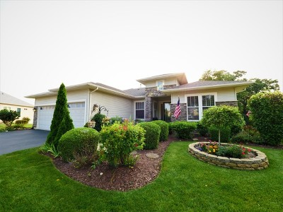 Huntley Single Family Home Contingent: 12463 Foxtail Lane