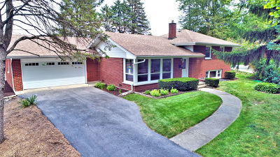 Naperville Single Family Home For Sale: 914 Hickory Lane