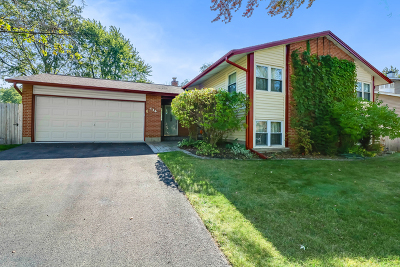 Bolingbrook Single Family Home New: 436 Justine Avenue