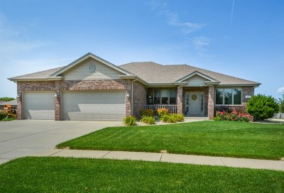 New Lenox Single Family Home Contingent: 701 Pintail Drive