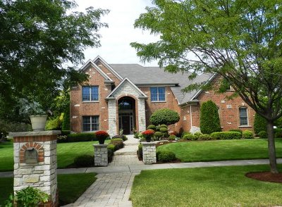 Bolingbrook Single Family Home For Sale: 1826 Pampas Circle
