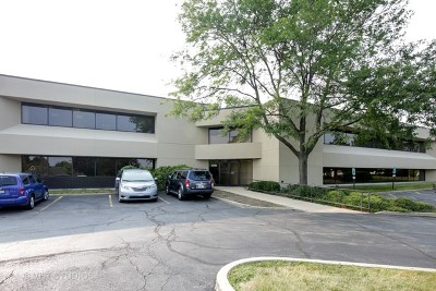 Elgin Commercial For Sale: 2295 Valley Creek Drive #E