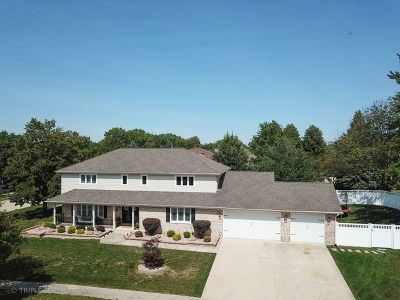 Homer Glen Single Family Home For Sale: 13318 West Hiawatha Drive