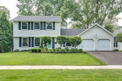 Naperville Single Family Home Contingent: 408 East 11th Avenue