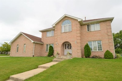 Tinley Park Single Family Home For Sale: 8213 Heather Lane