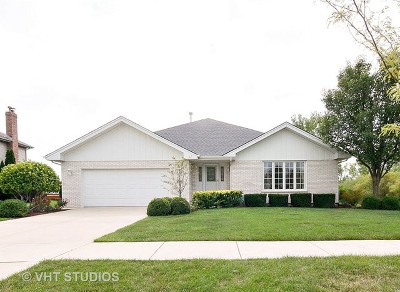 Tinley Park Single Family Home For Sale: 8819 Fairfield Lane