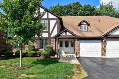 Western Springs Condo/Townhouse Contingent: 5810 Wolf Road #3A