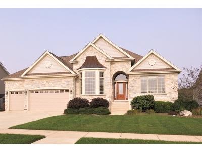 Elburn Single Family Home Contingent: 1567 Fairfield Drive