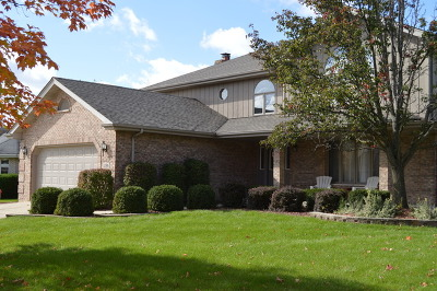 Lemont Single Family Home For Sale: 1296 Arbor Drive