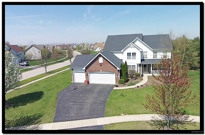Oswego Single Family Home Contingent: 501 Greenview Court