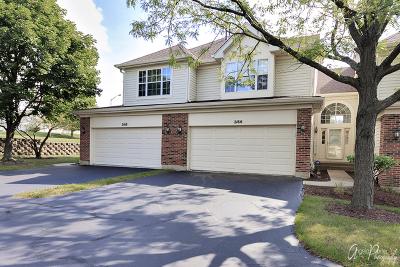 Hoffman Estates Condo/Townhouse For Sale: 2166 Seaver Lane