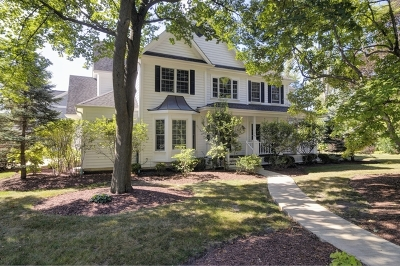 Glen Ellyn Single Family Home For Sale: 919 Waverly Road