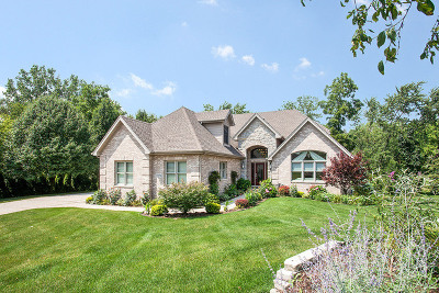 Homer Glen Single Family Home For Sale: 13250 West Cedar Creek Court
