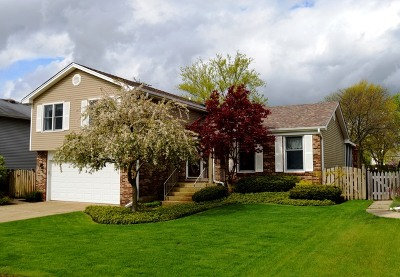 Schaumburg Single Family Home For Sale: 850 Pheasant Walk Drive