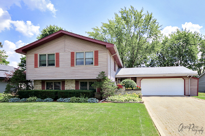 Hoffman Estates Single Family Home For Sale: 1555 Newcastle Lane