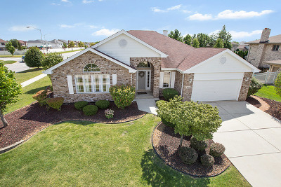 Tinley Park Single Family Home Contingent: 8801 Brown Lane