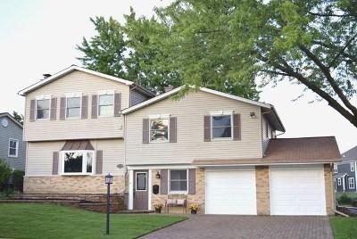 Hoffman Estates Single Family Home For Sale: 3585 Treaty Lane