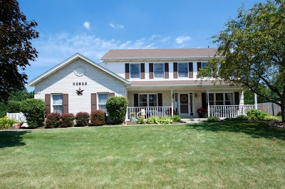 Plainfield Single Family Home For Sale: 23628 West Orchard Lane
