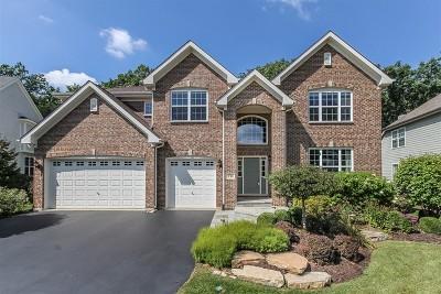 Bartlett Single Family Home Price Change: 230 Regency Drive