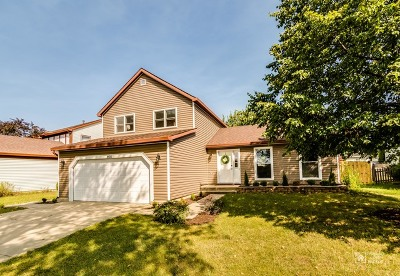 Hoffman Estates Single Family Home For Sale: 1135 Kingsdale Road