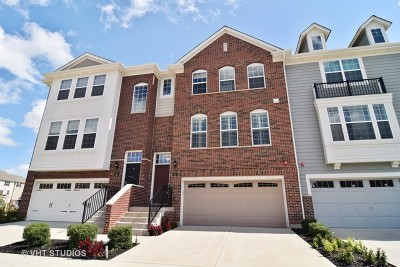 Schaumburg Condo/Townhouse For Sale: 43 Kevin Andrew Drive